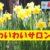 【*号外*】 わいわいサロン表彰! (令和元年6月23日)